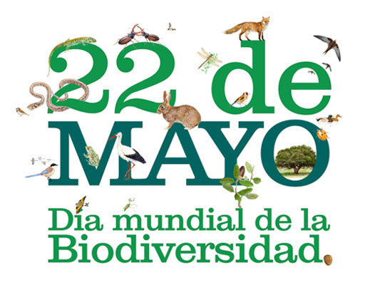Imágenes y frases para el 22 de Mayo: Día de la Biodiversidad o Diversidad Biológica