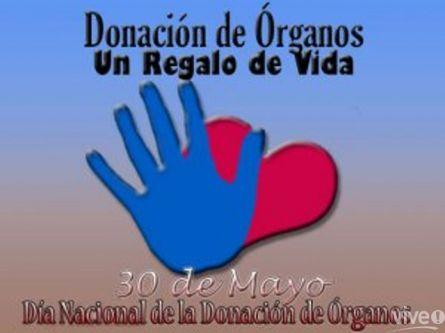 Día de la Donación de Organos - mensajes  (13)