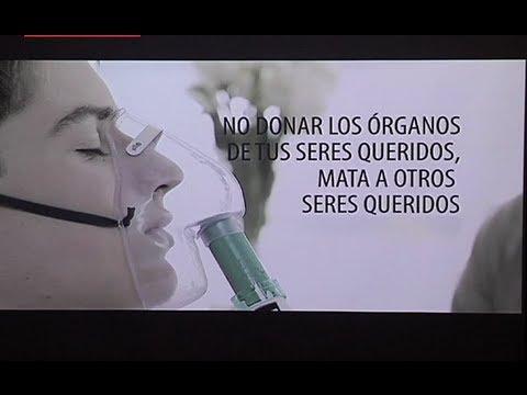 Día de la Donación de Organos - mensajes  (4)