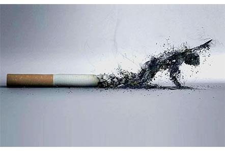 Día sin Tabaco Frases  (9)