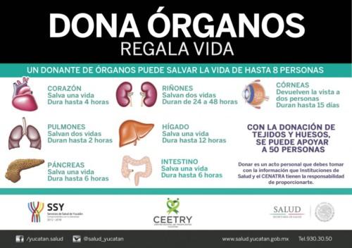 Información sobre  Donación de Organos y transplantes  (2)