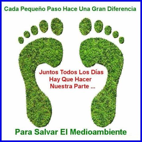Día del Medio ambiente Frases y mensajes (19)