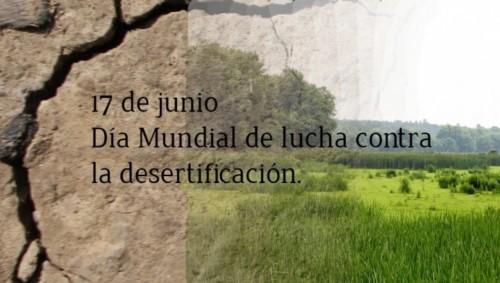 contra la desertificación y la sequia (14)