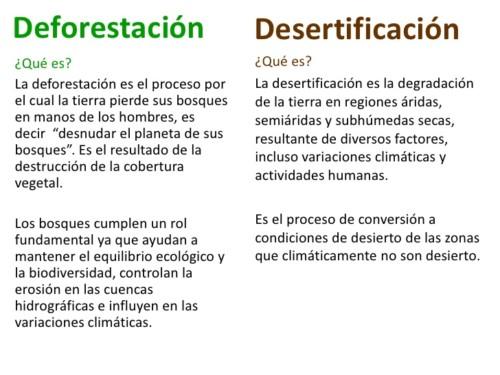 contra la desertificación y la sequia (4)
