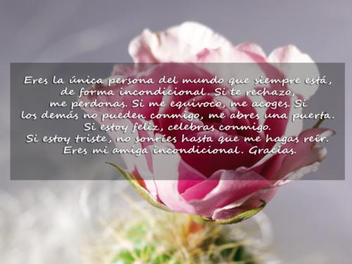 Felíz Día de las Madres (8)
