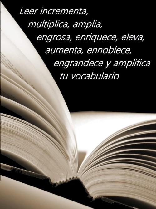 Frases del Día del Libro (4)