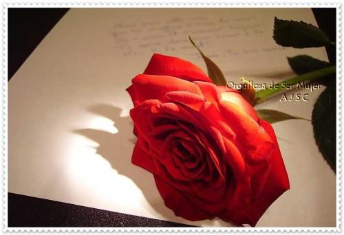 Felíz día de la Madre tarjetas frases (3)