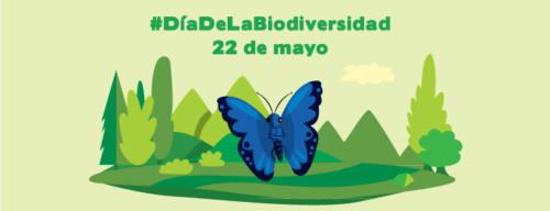 Día de la Biodiversidad  (25)