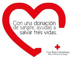 Día de la Cruz Roja Frases (2)