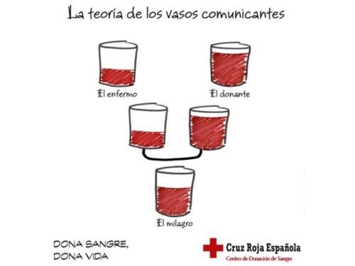 Día de la Cruz Roja Frases (3)