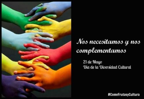 Día de la Diversidad Cultural  (13)