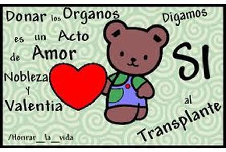 Día de la Donación de Organos - mensajes  (5)