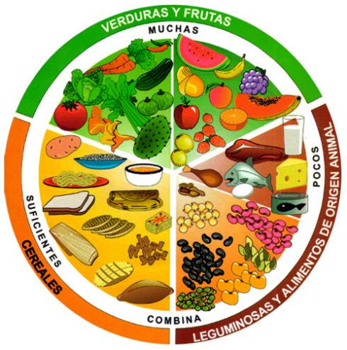 Día de la Nutrición información  (18)