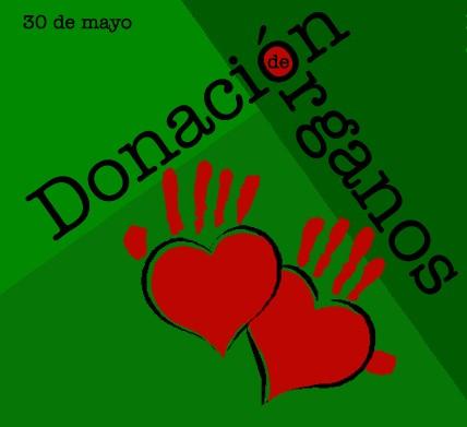 Día de la donación de organos frase  (11)