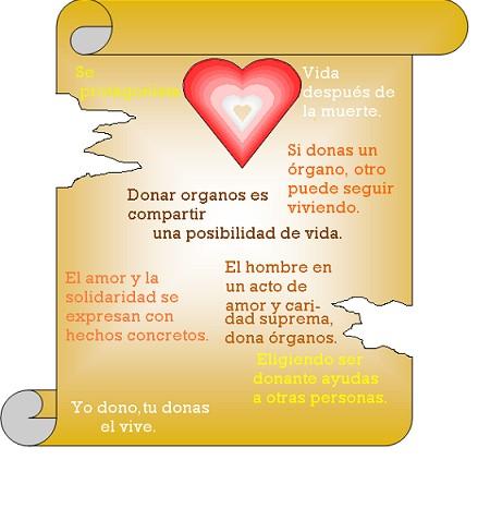 Día de la donación de organos frase  (7)