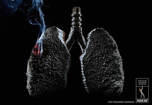 Día sin Tabaco Frases  (10)