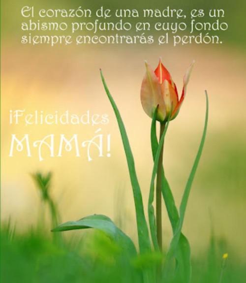 Dia de la Madre frases mensajes  (12)