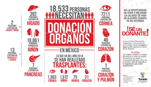 Información sobre  Donación de Organos y transplantes  (4)