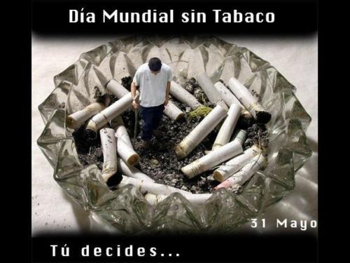 Mensaje Dia Mundial sin Tabaco  (3)