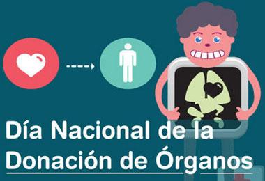 donacion-de-organos-copia1.jpg2_