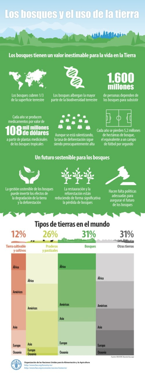infografia-biodiversidad  (2)