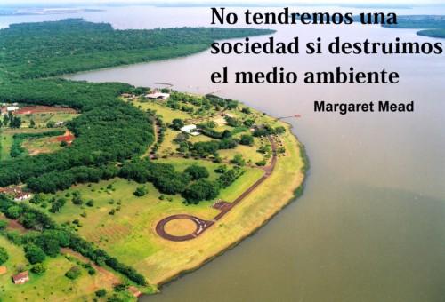 Día del Medio ambiente Frases y mensajes (16)