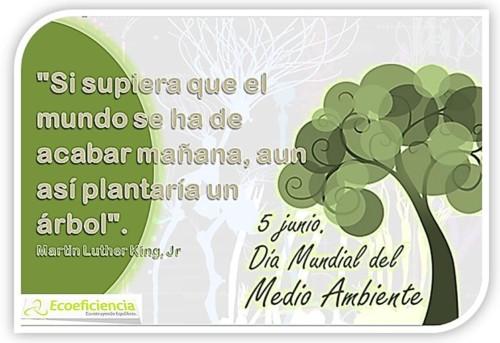 Día del Medio ambiente Frases y mensajes (21)