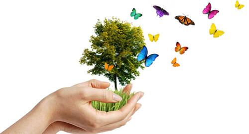 Día del Medio ambiente Frases y mensajes (27)