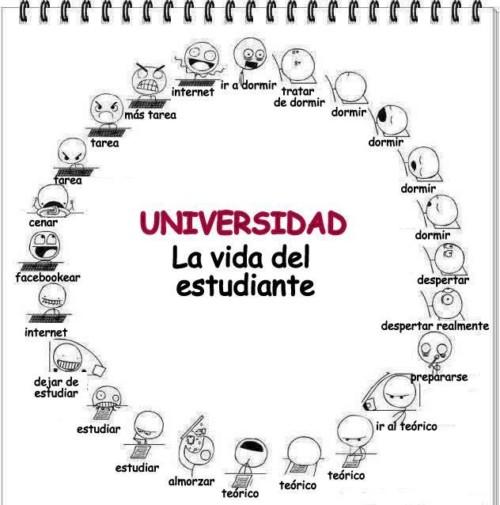 Felíz día del Estudiante carteles  (2)
