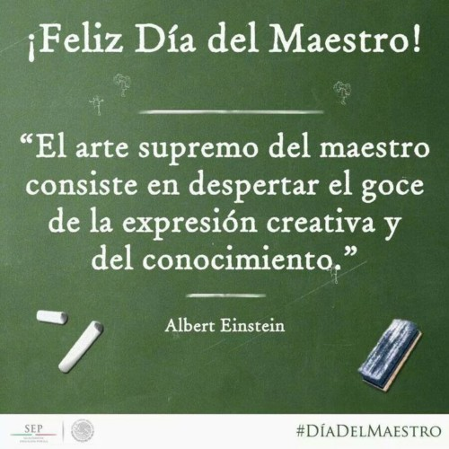 Feliz dia del Maestro frases  (10)