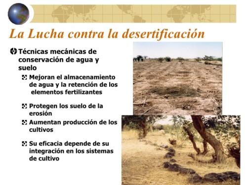 contra la desertificación y la sequia (12)