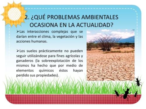 contra la desertificación y la sequia (9)