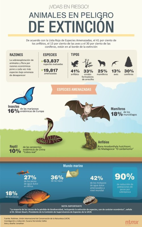 Infografias Día del Animal  (10)
