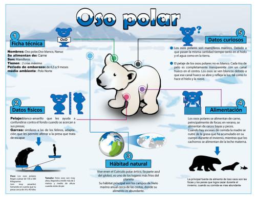 Infografias Día del Animal  (5)