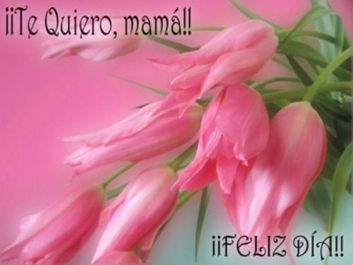 Dia de la Madre imágenes mensajes  (10)