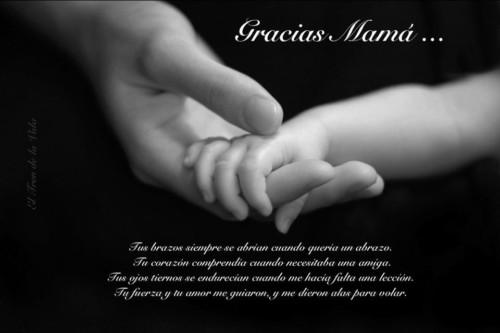 Felicidades Día de la Madre 2016 (11)