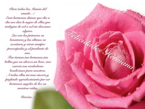 Felicidades Día de la Madre 2016 (19)