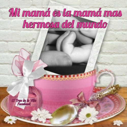 Felicidades Día de la Madre 2016 (24)