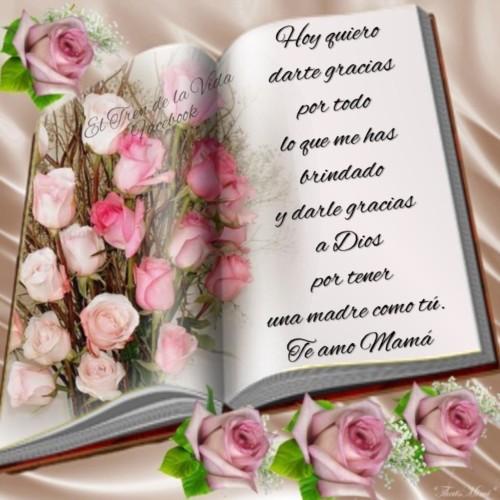 Feliz dia de la Madre - frases - mensajes (16)
