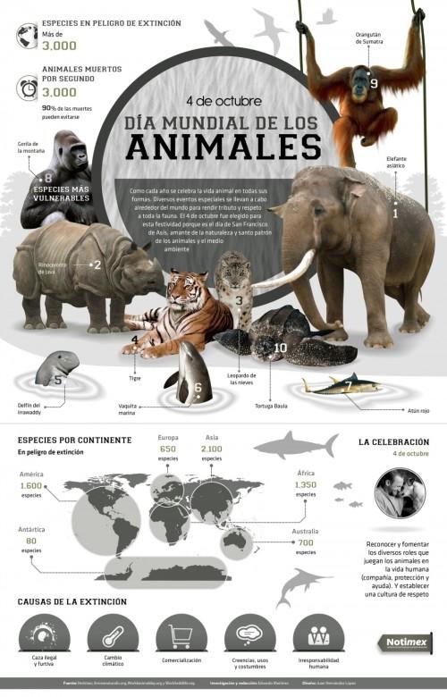 Día del Animal   (1)