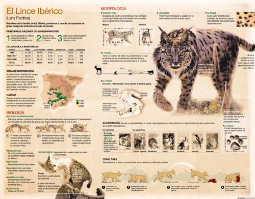 Día del Animal   (2)
