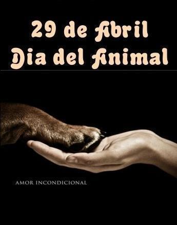 29 de abril: imágenes, frases e información para el Día del Animal