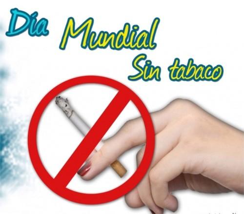 Día Mundial sin Tabaco información  (11)