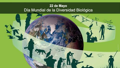 Día de la Biodiversidad (10)