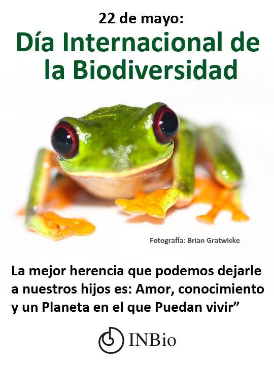 Día de la Biodiversidad (12)