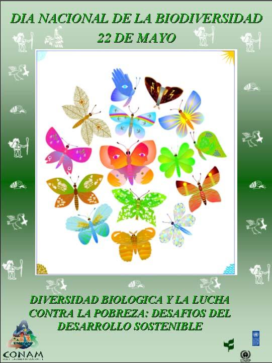 Día de la Biodiversidad (13)