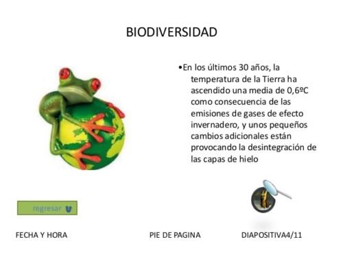 Día de la Biodiversidad (3)