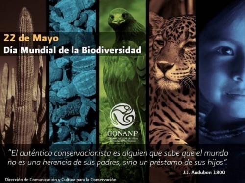 Día de la Biodiversidad (8)