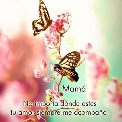 Frases Día de la Madre (6)