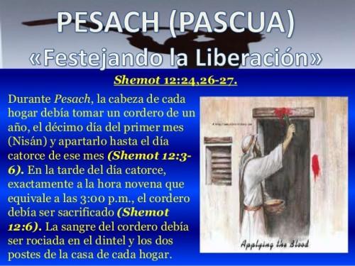 feliz Pesaj pascua  (13)